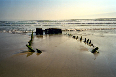 Picture of a ship wreck visible above the sand