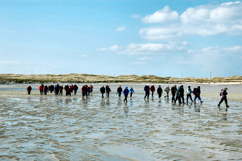 Picture of a group of walkers crossing a beach at low tide