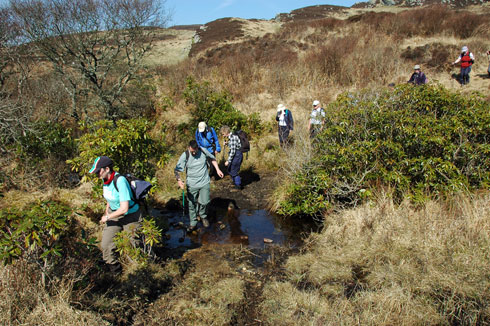 Picture of a group of walkers crossing a burn on Islay